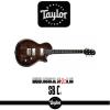 TAYLOR SB-C1 Custom