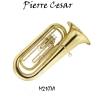 Pierre Cesar M2107A