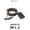 RAPCO NSPL32X8-100FF