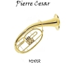 Pierre Cesar M2105R