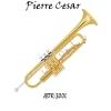 Pierre Cesar JBTR-300L